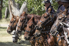 CASPER, WY__CIRCA JULY 2015__Soldiers and indians reenactment in Casper, Wy. circa July 2015 Stock Photos