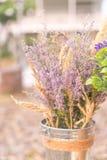 Caspia for Filler Flowers Stock Photo