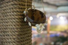 Casquillo de la decoración con las cáscaras Imagen de archivo libre de regalías