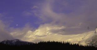 Casquillo del invierno Imagen de archivo
