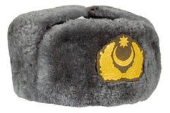 Casquillo del uniforme militar de la piel Fotografía de archivo libre de regalías