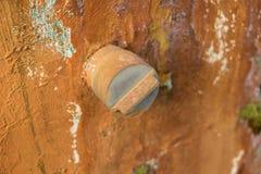 Casquillo viejo mohoso del PVC del primer en el muro de cemento sucio - jardín verde foto de archivo libre de regalías