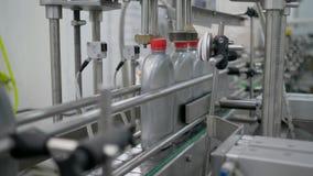 Casquillos rojos del arreglo de la máquina de la producción en las botellas plásticas en transportador en la fábrica del aceite d almacen de metraje de vídeo