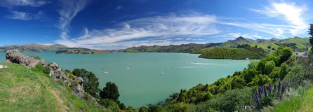 Cass Bay landscape panorama. Vivid blue sky, blue-green waters and lush vegetation panorama of Cass Bay in New Zealand Royalty Free Stock Photo