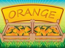 Cassa arancione Fotografie Stock