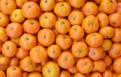 Cassa dei mandarini maturi Immagine Stock
