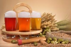 Cassa della birra con i vetri di birra Immagini Stock Libere da Diritti