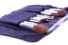 Cassa della spazzola professionale dell'artista di trucco Immagine Stock