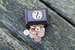 Cassa di tesoro con le euro monete Fotografia Stock
