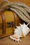 Cassa di tesoro del pirata Immagine Stock