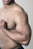 Cassa e braccio muscolari maschii della spalla Immagini Stock