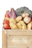 Cassa organica delle verdure Fotografia Stock