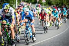CASSANO D' ADDA, ITÁLIA - MAIO 25,2016: Giro d' Italia, fase 17°, na grande proximidade à cidade de Cassano d' Ad Fotos de Stock Royalty Free