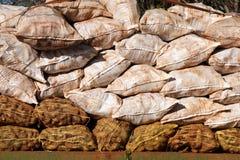Cassava bags Stock Image