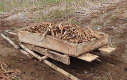 Cassava cart Stock Image