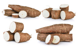 Cassava isolated. On a white background Royalty Free Stock Photography