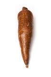 Cassava or Manioc root  Stock Image