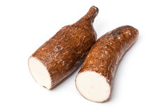 Cassava or Manioc roots Royalty Free Stock Photos