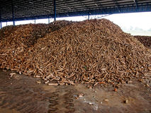 Cassava pile Stock Images