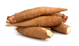 Cassava root. Fresh cassava slices on white background Stock Photos