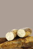 Cassava root and some pieces royalty free stock photos