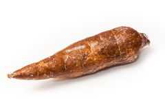 Cassava root vegetable  Stock Image