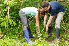 Cassava Roots Extraction By European Couple Stock Photo