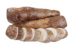 Cassava (yucca) Stock Images