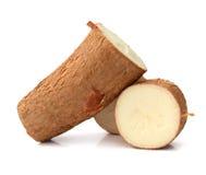 Cassava. Yucca cassava root with slice  on white Royalty Free Stock Photo