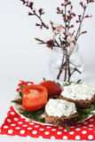 Casse-croûte de fromage, tomate et un groupe Photo libre de droits