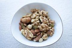 Casse-croûte de noix Photo libre de droits