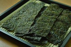 Casse-croûte de mauvaise herbe de mer Photos stock