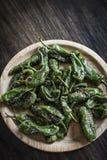 Casse-croûte espagnol de tapas de poivrons verts grillé par padron de piments Images stock
