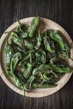 Casse-croûte espagnol de tapas de poivrons verts grillé par padron de piments Photographie stock libre de droits