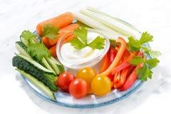 Casse-croûte sains, légumes frais mélangés et yaourt d'un plat Image stock