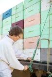 Casse del favo di Tying Rope To dell'apicoltore caricate sopra Fotografie Stock