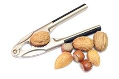 Casse-noix avec des noix Photo stock