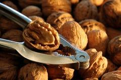 Casse-noix avec des noix Photos stock