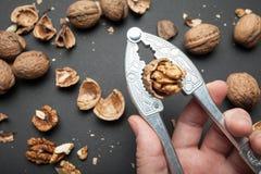 Casse-noix avec une noix coupée dans la main d'un homme sur un fond noir image stock