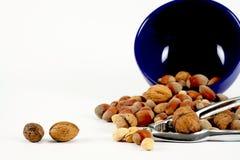 Casse-noix en acier Photo stock