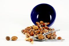 Casse-noix en acier Image stock