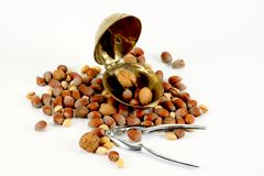 Casse-noix en acier et en laiton Images stock