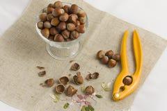 Casse-noix et écrous Photo stock