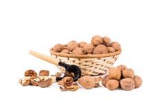 Casse-noix et noix Image libre de droits