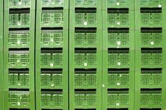 Casse verdi dell'imballaggio della frutta Immagini Stock Libere da Diritti