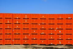 Casse verdi dell'imballaggio della frutta Immagini Stock