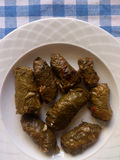 casserole ελληνικά κομματιασμένα κρέας λαχανικά moussaka κουζίνας γεμισμένη φύλλα άμπελος στοκ φωτογραφία με δικαίωμα ελεύθερης χρήσης
