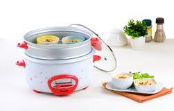casserole ηλεκτρικό βράσιμο στον & Στοκ Εικόνα
