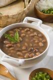 casserole φασολιών στοκ εικόνες
