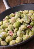 Casserole with brussels sprouts. Casserole with cooked brussels sprouts with cream and ham Royalty Free Stock Photo